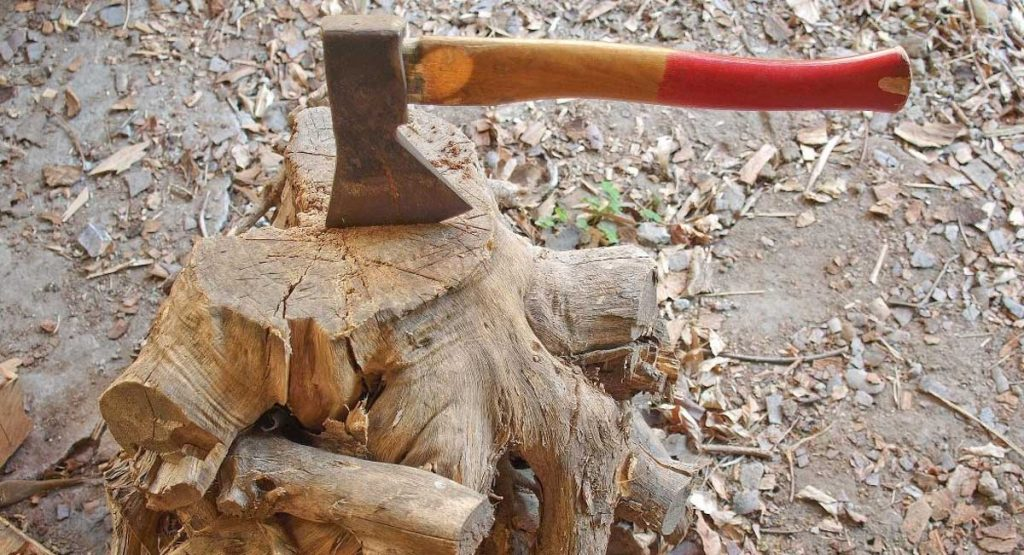 The Best Axe for Splitting Wood