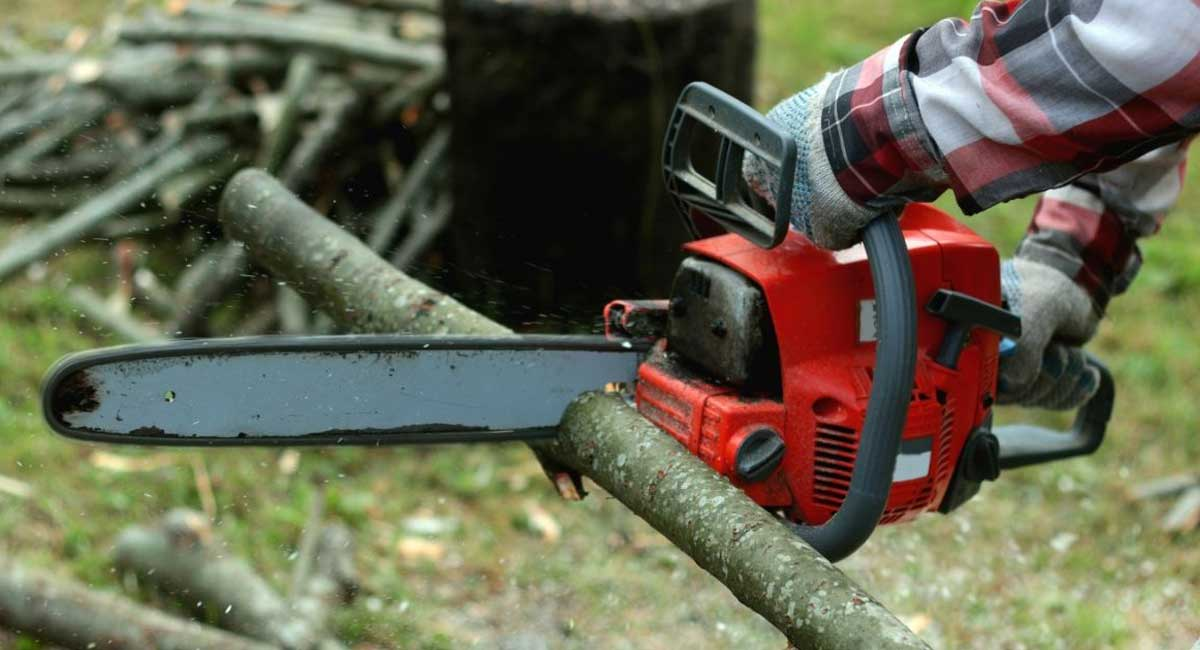 The Best Chainsaw for Carving